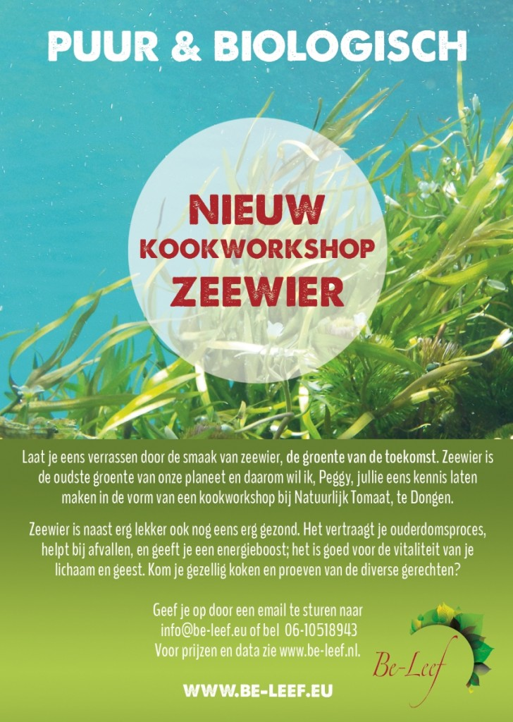 kookworkshop zeewier in dongen