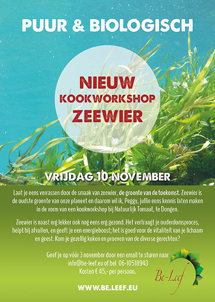 flyer zeewier web