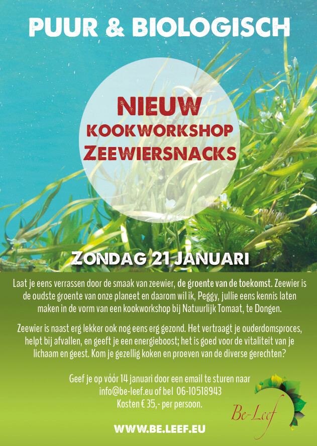 zeewier workshop in dongen (brabant)